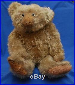 Exceptionally Rare 18 Antique 1930s German Helvetic Musical Bellows Teddy Bear